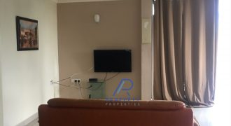 2&3BR Furnished Apartments for Rent in East Legon