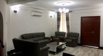 Fully Furnished 2 Bedrooms Apartment Located In Osu.