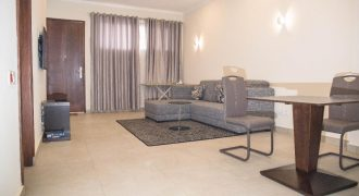 1 Bedroom Apartment For Rent In East Airport